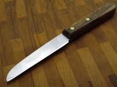 kitchen paring knives paring knife with sheath is the fruit knife and an essential