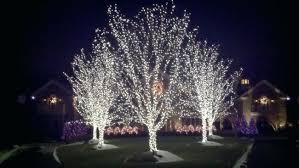best led lights for outdoor trees outdoor ball lights trees about home decor