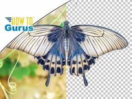 photoshop how to cut out an image the pen tool remove