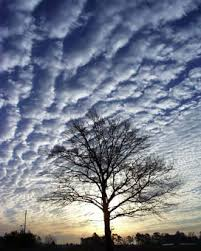 Digital Photography Cloudman S Tips On Photography Digital Photography