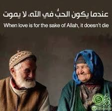 Muslim Marriage Memes - 156 best islamic quotes and sayings images on pinterest islamic