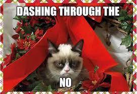 Memes Of Grumpy Cat - my 35 favorite grumpy cat memes