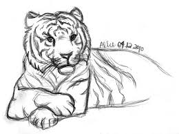 sketch tiger lying look by starlightmemory on deviantart