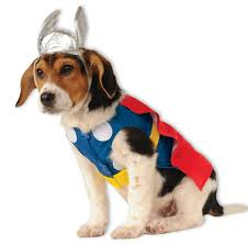 rubies marvel thor pet dog movie comic avengers book halloween