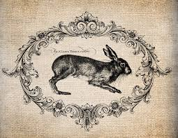 vintage rabbit 36 best rabbits images on rabbit illustration bunny