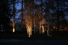 Outdoor Up Lighting For Trees Artistic Landscapes Low Voltage Landscape Lighting