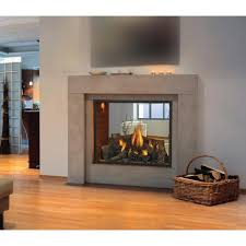 Natural Gas Fireplaces Direct Vent by Napoleon Hd81 Direct Vent Natural Gas See Thru Fireplace Gas Log