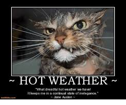 Hot Weather Meme - motifake comm hot weather what dreadful hot weather we have lt