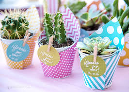 favor favor baby diy mini succulent favors for a baby shower mami talks