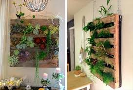 unique 30 hanging wall planter decorating inspiration of best 25