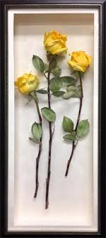 preserving flowers preserve your flowers fantastic blooms floral preservation
