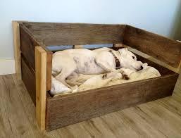 choose a special hammock dog bed extra large beds diy inside