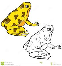 cartoon of poison dart frog coloring page stock vector image