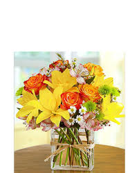 Flowers In Bradenton Fl - fields of europe in rectangle vase in bradenton fl oneco florist