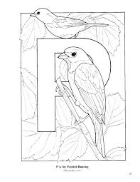 bird alphabet coloring pages coloring pages for kids
