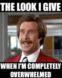 M Meme - when i m overwhelmed funny will ferrell meme quotes pinterest