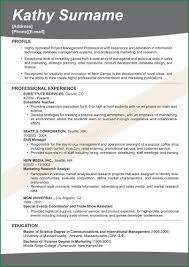 Resume Headline For Mca Freshers Amazing Headline For Resume Profile Gallery Simple Resume Office