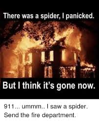I Saw A Spider Meme - 25 best memes about firefighter saw and spider firefighter
