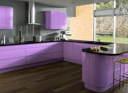 purple kitchen design purple kitchen cabinets grousedays org