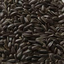 bird feed u0026 seed product categories merton feed company