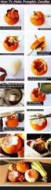 Better Homes And Gardens Halloween Crafts by Best 20 Photo Halloween Ideas On Pinterest Photos D U0027halloween