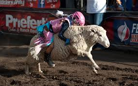 motocross gear for toddlers 6 seconds and a sheep welcome to the world of mutton busting