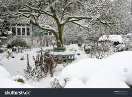 winter garden stock photo 492874582 shutterstock