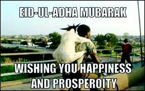 Eid Memes - 11 funniest eidul azha memes the express tribune