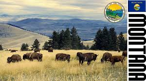 Montana State Flag State Anthem Of Montana Montana Song Instrumental Youtube