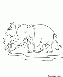 jungle animals coloring pages for kids coloring home