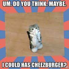 Cheezburger Meme Maker - can i has cheezburger meme generator mne vse pohuj
