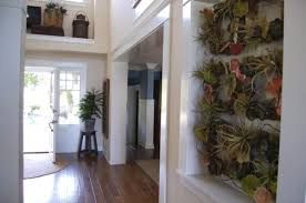 25 ways of including indoor plants into your home u0027s décor