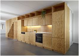 How To Make Cabinet Doors From Plywood Plywood Kitchen Cabinet Doors Ama Pinterest Plywood Kitchen