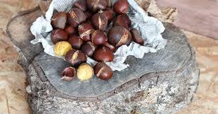 cuisiner marrons frais cuisiner des marrons frais 100 images comment cuire des