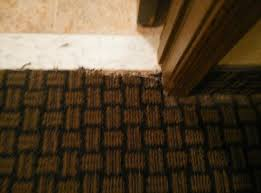 Bathroom Grants Carpet Of Coming Off From The Corner Near The Entrance Of The