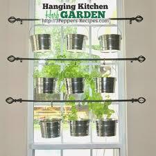 window herb gardens how will indoor window herb garden be
