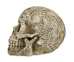 Celtic Skull - amazon com celtic owl knotwork human skull statue pagan by