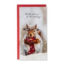 american greetings 14ct squirrel with glasses boxed cards