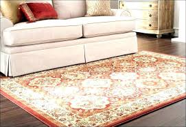 Indoor Outdoor Rug Runner Wayfair Outdoor Rugs Rugs Indoor Outdoor Rugs Living Room