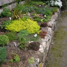 Rock Garden Landscaping Ideas Easy Care Rock Garden Archives Catsandflorals Com Winsome Easy