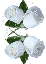 بالتسامح والحب  Images?q=tbn:ANd9GcTLk2A35xPdCX87EZpWoZo_p7NFNQ2pgIIqb1C5Q18fO9kvDGI1