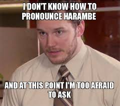 Meme How To Pronounce - i don t know how to pronounce harambe and at this point i m too