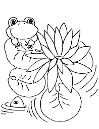 lily pad frog coloring color luna