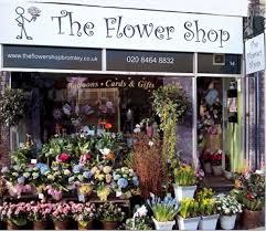 flowers shop the flower shop