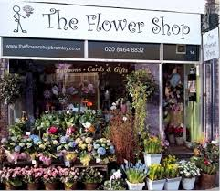 flower shop the flower shop