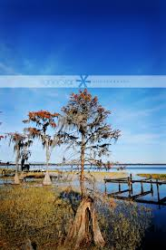 thanksgiving in st augustine thanksgiving wrap up lanierstar photography amelia island