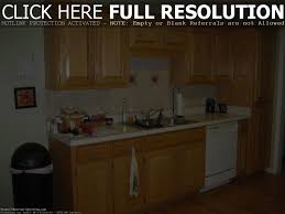 Kitchen Cabinet Color Ideas For Small Kitchens by Small Kitchens With Dark Cabinets Modern Cabinets