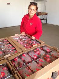 food processing quality control technician chanco between la candelaria and guadalupe del carmen dave u0027s chile