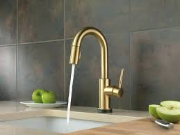 Brushed Bronze Kitchen Faucet Kitchen Faucet Fascinating Widespread Kitchen Faucet