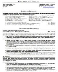 Executive Summary For Resume Examples by Executive Resume Sample 9 Examples In Word Pdf
